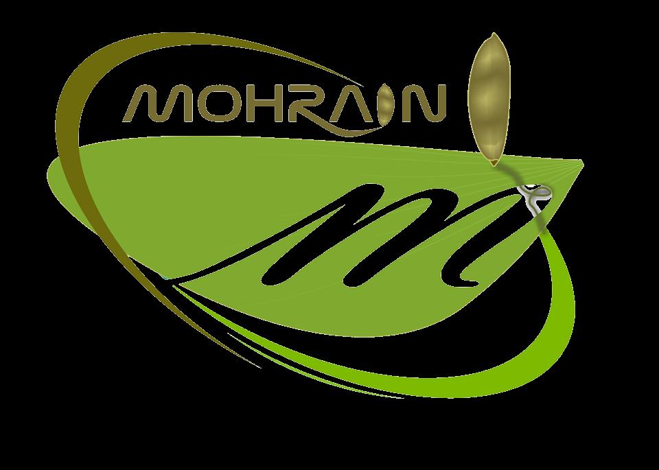 Mohrain WebSoft Pvt. Ltd.